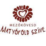 mezokovesd-logo